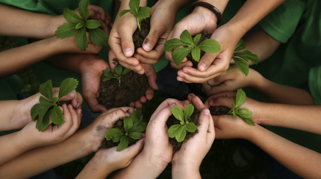 kids-hands-holding-plants-yolo-farm-to-fork-1030x686